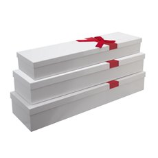 Rose Box Deluxe - Glossy Rose Box Dozen wth Ribbon White (75x21x11cmH) Set 3
