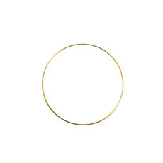Wreath Supplies - Floral Metal Hoop Ring Gold (20cmD)