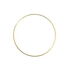 Wreath Supplies - Floral Metal Hoop Ring Gold (25cmD)