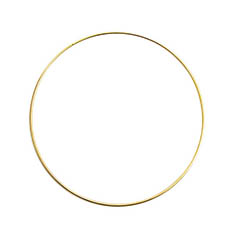 Wreath Supplies - Floral Metal Hoop Ring Gold (30cmD)