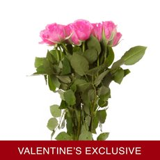 Imported Platinum Fresh Rose Bunched 10 Revival (50cm) VAL
