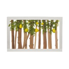 Wall Art Lemon Natural Branch Yellow (57x37x6.5cmH)