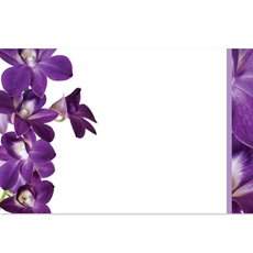 Cards Singapore Orchid 50 Pack (10x6.5cmH)