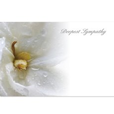 Cards Floral Deepest Sympathy 50 Pack (10x6.5cmH)