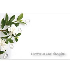 Florist Enclosure Cards - Cards Gardenia Forever In Our Thoughts(10x6.5cmH) Pack 50