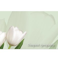 Florist Enclosure Cards - Cards Tulips Deepest Sympathy Green Card (10x6.5cmH) Pack 50