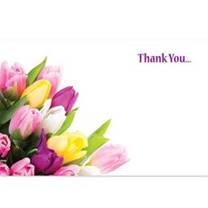 Cards Tulips Assorted Thank You 50 Pack (10x6.5cmH)