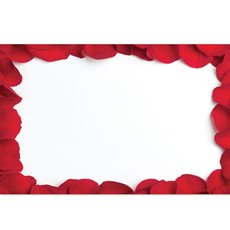 Cards Red Rose Petals Border PK50