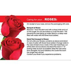 Cards Flower Care for Roses 50 Pack (10x6.5cmH)