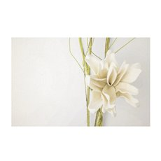 Florist Enclosure Cards - Cards White Gardenia (10x6.5cmH) Pack 50