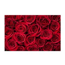 Cards Roses Bunch Red 50Pk (10x6.5cmH)