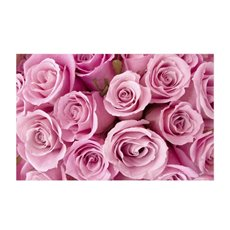 Florist Enclosure Cards - Cards Rose Bunch Pink (10x6.5cmH) Pack 50