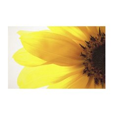 Florist Enclosure Cards - Cards White Sunflower (10x6.5cmH) Pack 50