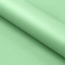 Counter Rolls - Counter Roll Wide Bulk Solid Gloss Mint (70cmx50m)