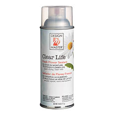 Design Master Spray Clear Life (312g)