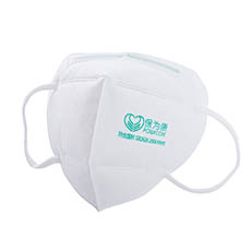Florist Warehouse Supplies - Disposable Dust Mask N95 Pack 10