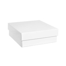Gourmet Box Square Small White (24x24x9cmH)