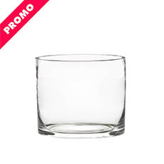 Glass Cylinder Vase Clear (18Dx15cmH) Promo