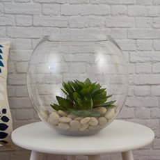 Glass Fish Bowl 28cm Clear (18TDx26Dx26cmH)
