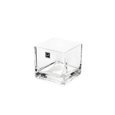 Glass Square Vases - Glass Cube Vase 10cm Clear (10x10x10cmH