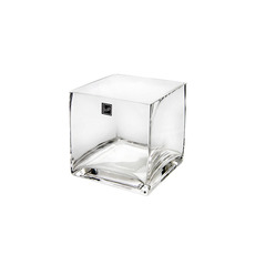 Glass Square Vases - Glass Cube Vase 12cm Clear (12x12x12cmH)