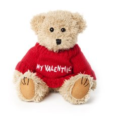 Teddy Bear Message My Valentine  20cmHT. Red