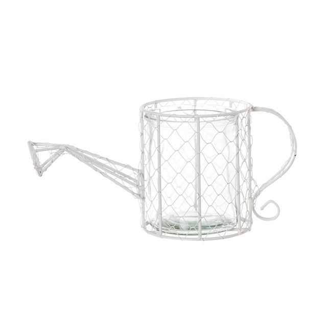Mesh Watering Can with Glass Vase (33x14x22cmH)