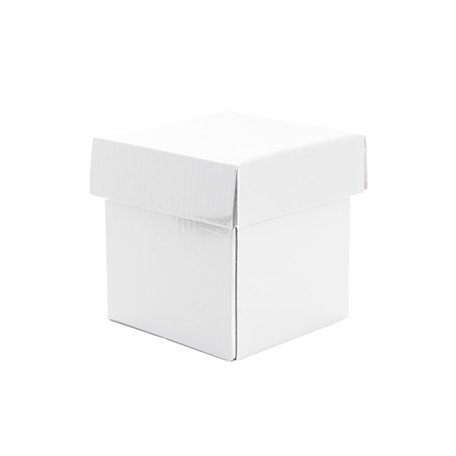 Patisserie & Cake Boxes - Cake Box & Lid White (10x10x10cm)