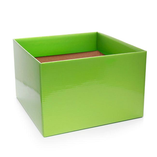 Posy Box Large Lime Green (22x14cmH)