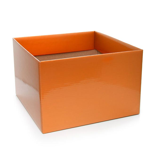 Posie Flower Box Large - Posy Box Large Orange (22x14cmH)