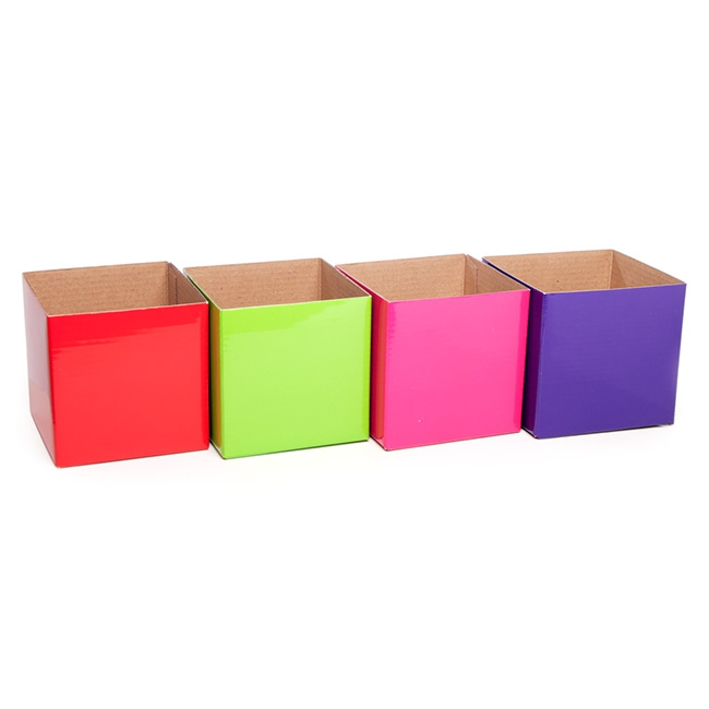 Posie Flower Box Mini - Posy Box Extra Mini  Assorted Brights(10x10x10cmH) Pack 20