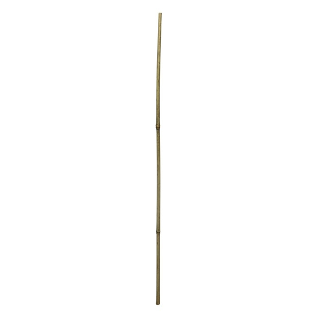 Bamboo Poles & Sticks - Bamboo Pole 8mm Single Natural (8mmx90cmH)