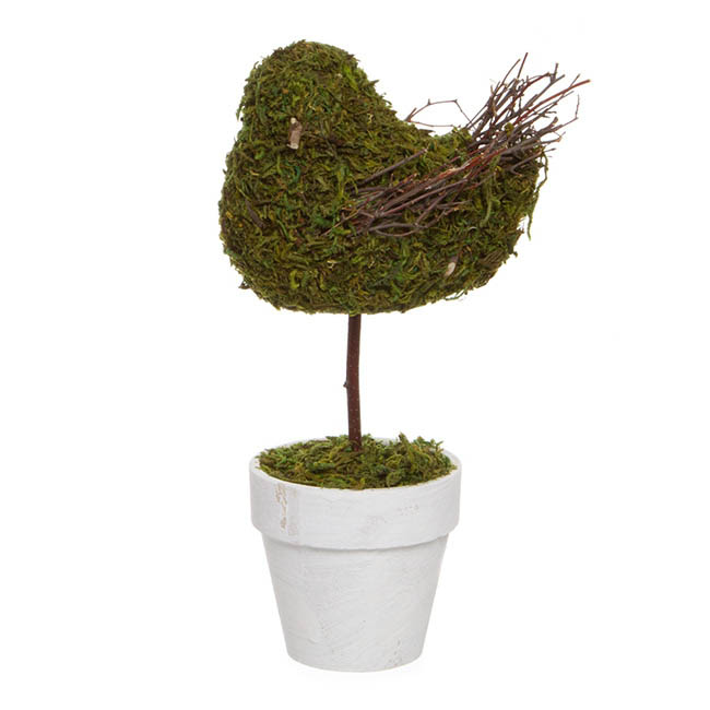 Garden Trend Bird with Moss in Pot Green (27cmH)