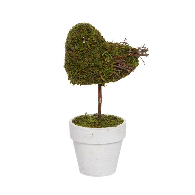 Garden Trend Bird with Moss in Pot Green (25cmH)