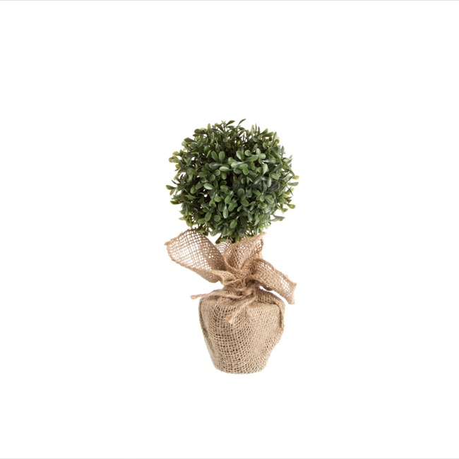 Boxwood Topiary with Jute Wrap Green (28cmH)