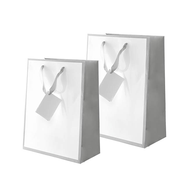 Glossy Gift Carry Bags - Gloss Paper Bag Silhouette Grey Wht (240x120x355mmH) Pack 5