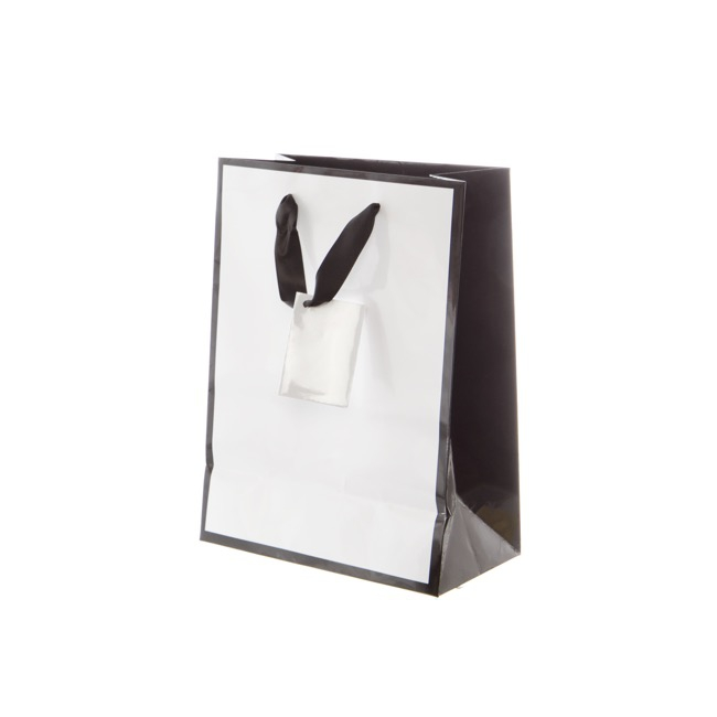 Glossy Gift Carry Bags - Gloss Paper Bag Silhouette White Black(205x110x275mmH)Pack 5