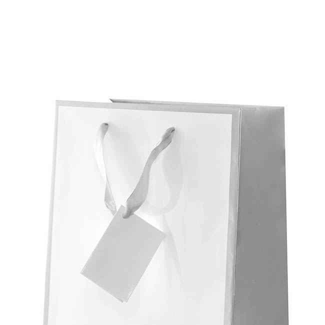 Glossy Gift Carry Bags - Gloss Paper Bag Silhouette Grey Wht (205x110x275mmH) Pack 5