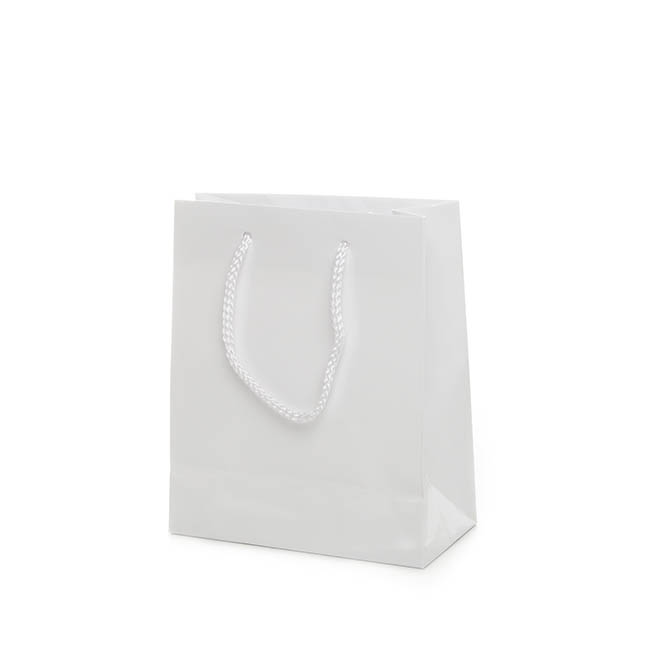 Glossy Gift Carry Bags - Gloss White Paper Bag Rope Handle (180Wx85Gx215mmH)
