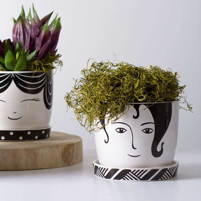 Trend Ceramic Pots - Ceramic Planter Dorothy with Saucer Large (15cmDx13.5cmH)