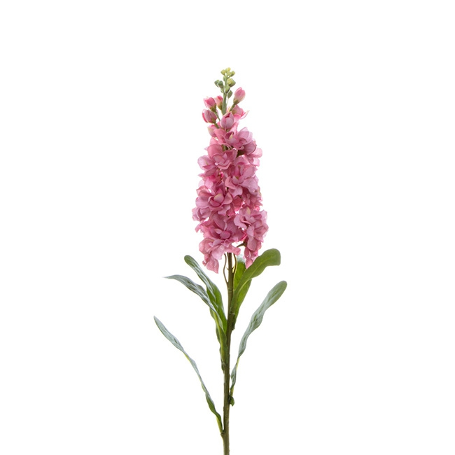 Stock Flower stem Pink (80cmH)
