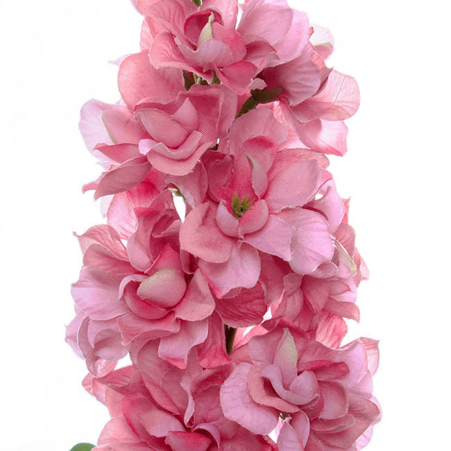Other Flowers - Stock Flower stem Pink (80cmH)