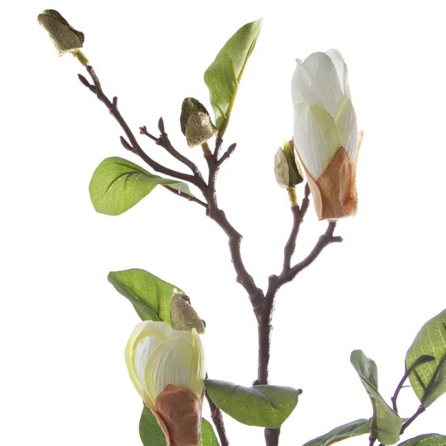 Artificial Magnolias - Magnolia Bud Spray x2 Cream (71cmH)