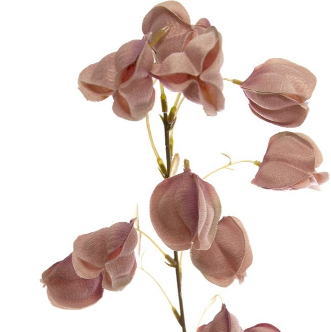 Other Artificial Flowers - Lantern Flower Spray Dusty Rose (97cmH)