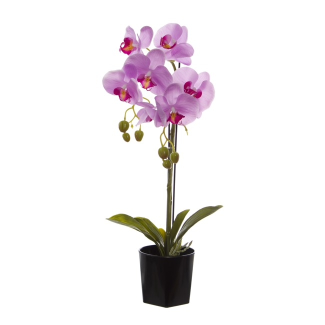 0f4547a5c0 Artificial Orchids - Phalaenopsis Orchid Potted Real Touch 7 Flowers Pink  (65cm)