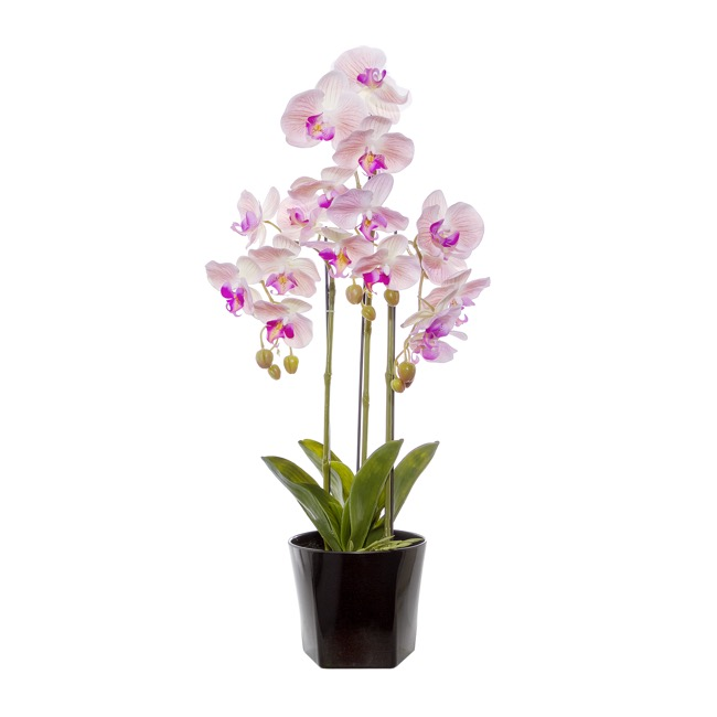 0139eb136d Artificial Orchids - Phalaenopsis Orchid Potted Real Touch 17Flowers  LtPink(75cm)