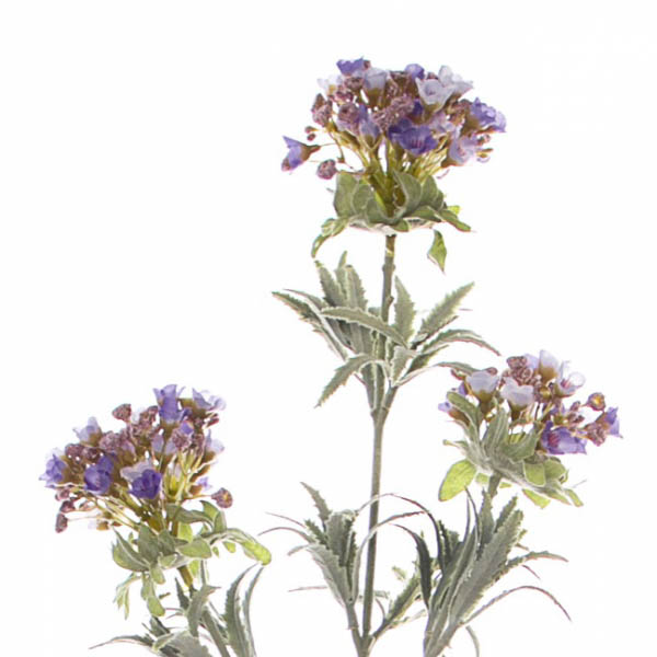 Other Artificial Flowers - Sweet Alyssum Spray Lavender (78cmH)