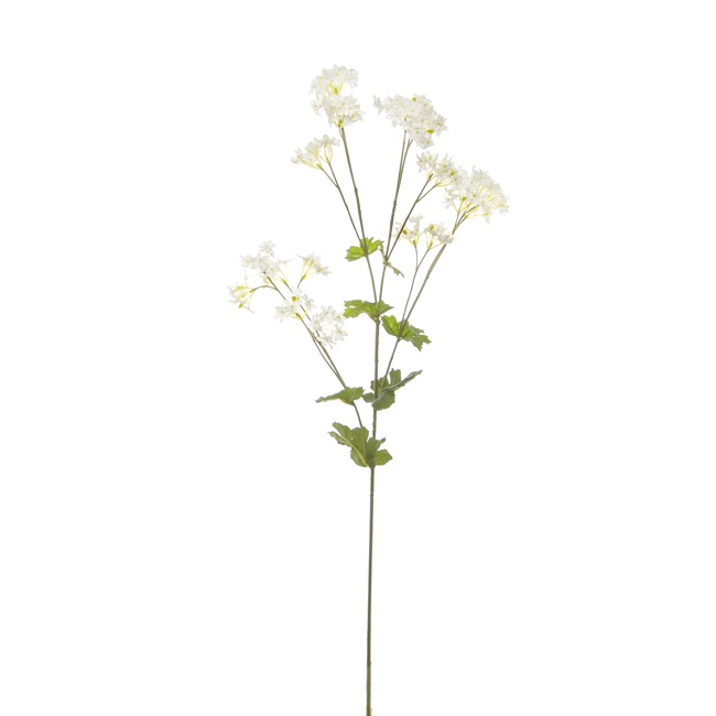 Other Flowers - Lady's Mantle Spray Cream (81cmH)