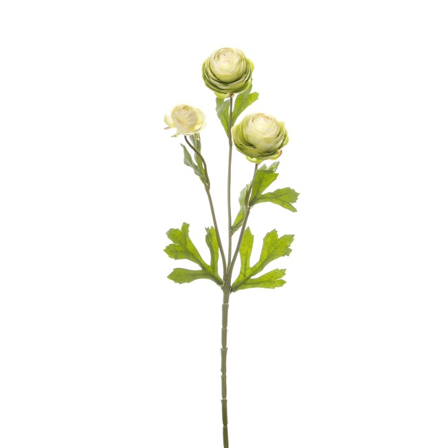 Other Artificial Flowers - Petite Ranunculus Spray Cream Green (42cmH)