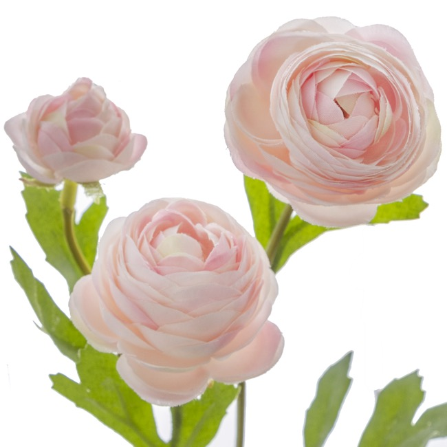 Other Flowers - Petite Ranunculus Spray Light Pink (42cmH)